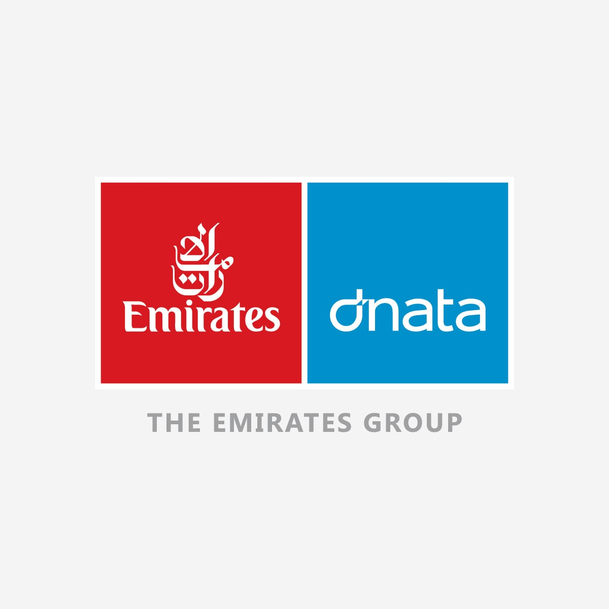 Home Emirates Group Careers